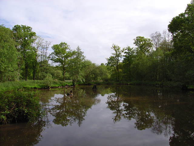 Pond near Frith Common