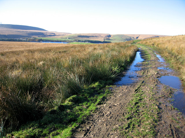Track on Longworth Moor