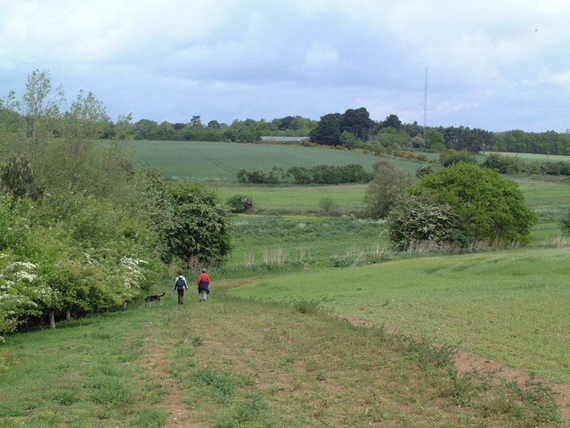 Leiston Common