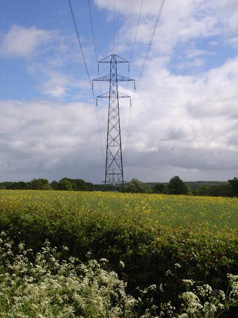 Pylon near Kingsclere
