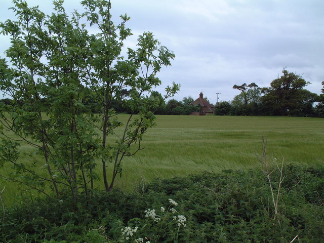 Field near Eastbridge