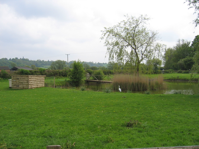Pond by Moors Lane