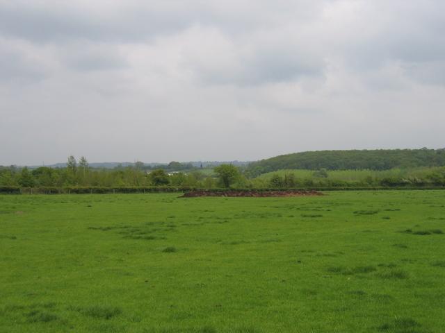 View from Bradley Green