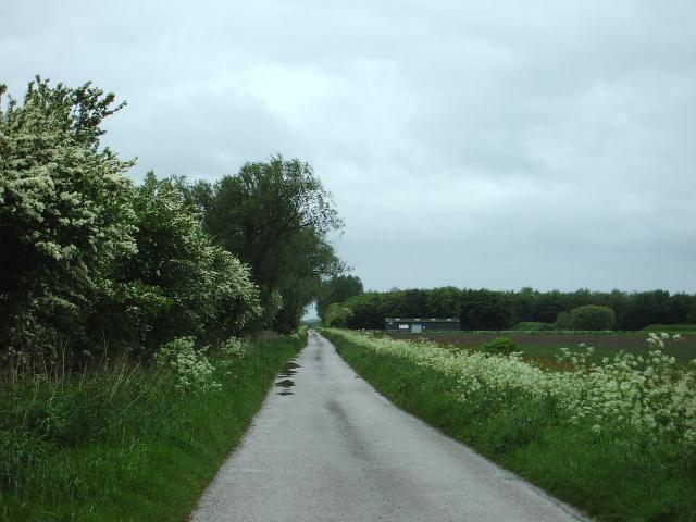Dib Road