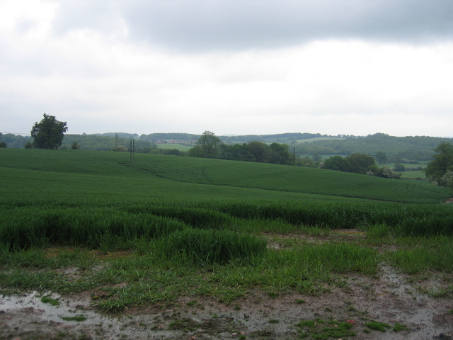View NNE from Hewell Lane