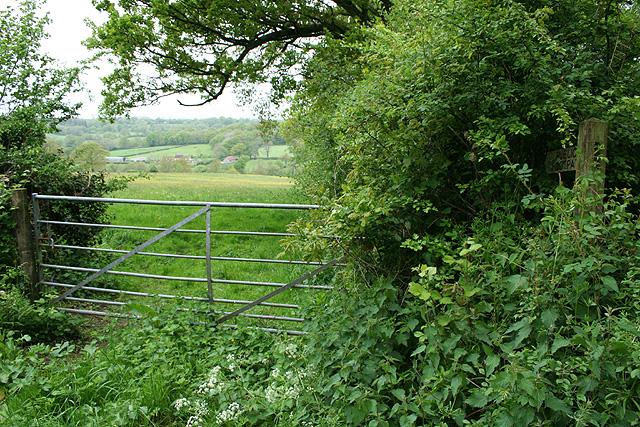 Churchstanton: near Courtsmoor Farm