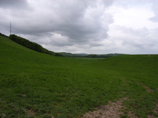 Downland near Kingsclere