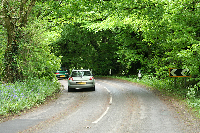 Pitminster: road by Mount Pleasant