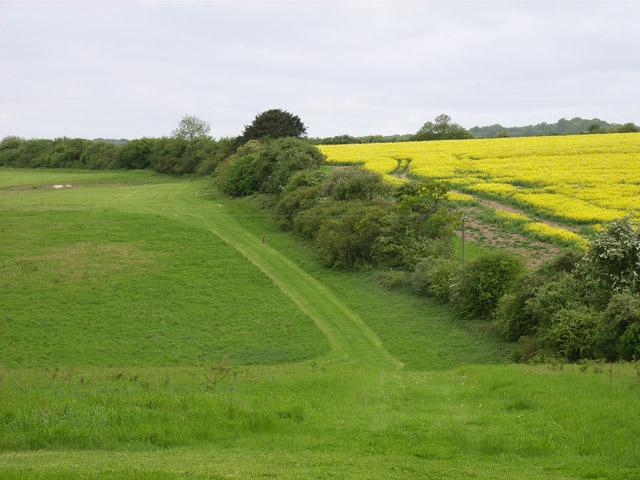Farmland at Tidgrove Warren