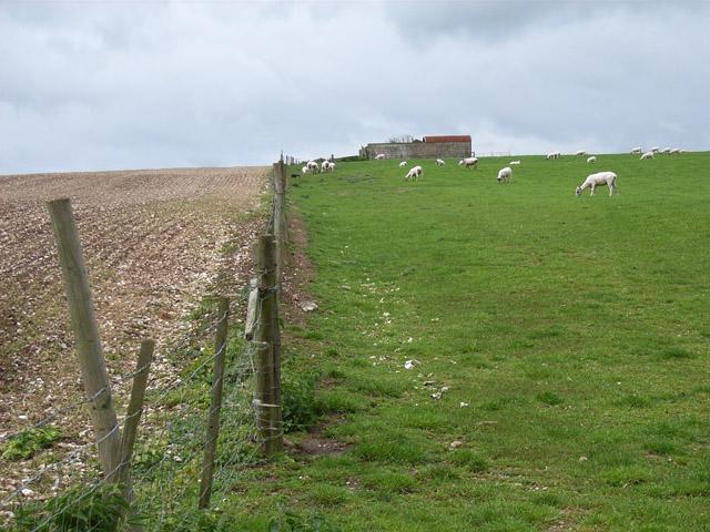 Farmland at Cannon Heath