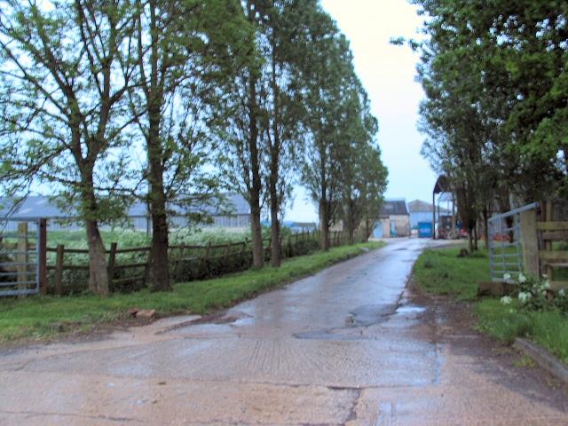 Weston Park Farm