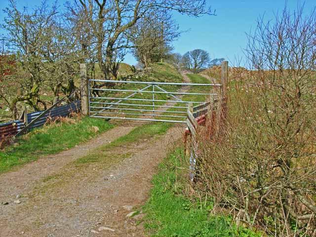 Road to Drumpail Farm
