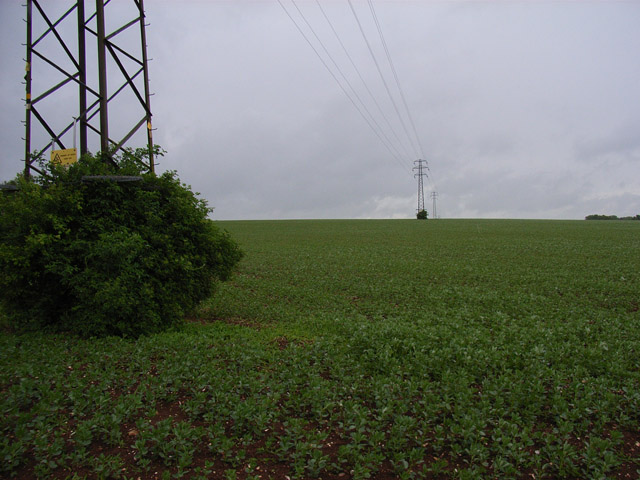 Arable farmland near Mapledurwell