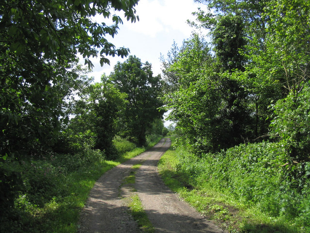 Hole Farm Road - Great Warley