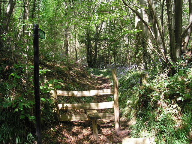 Footpath into Hawks Wood