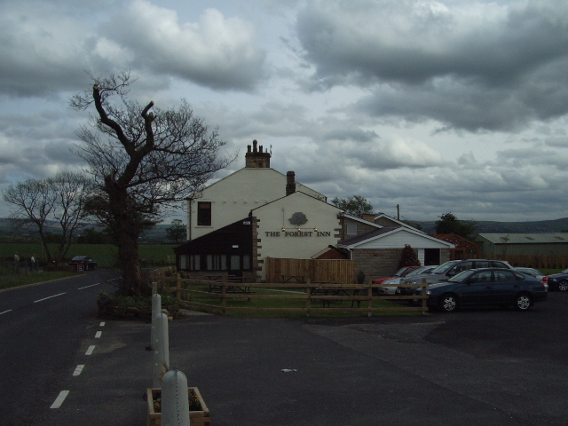 The Forest Inn