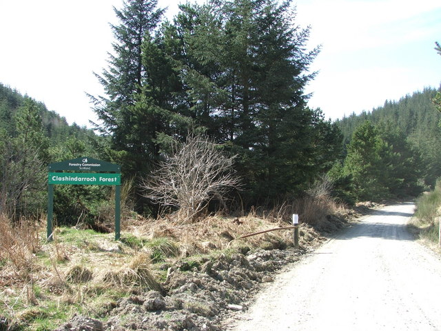 Clashindarroch Forest