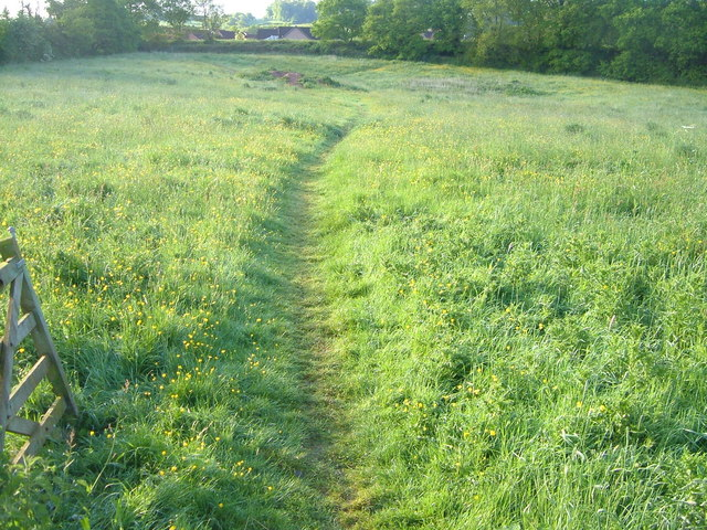 Path across field