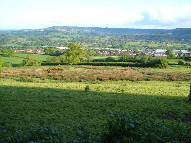 Honiton from Gittisham Hill