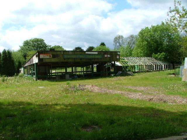 Knypersley Hall Garden Centre
