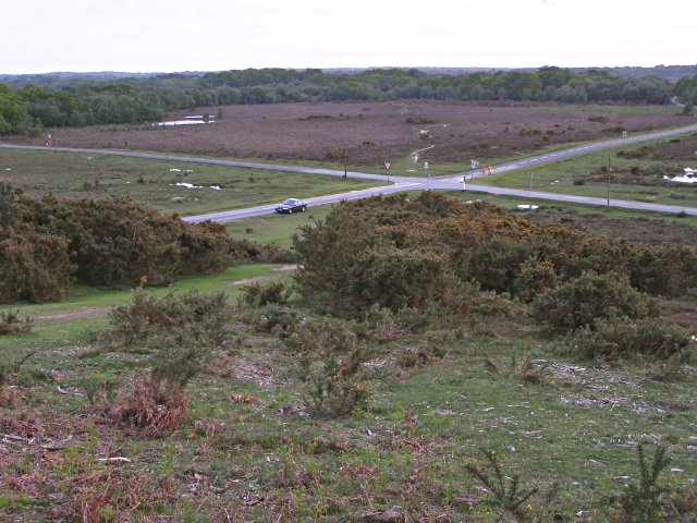 Ipley Cross, New Forest