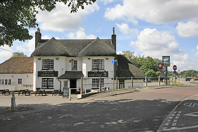 The Fish Inn, West Street, Ringwood