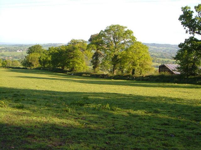 Near Rapshayes Farm