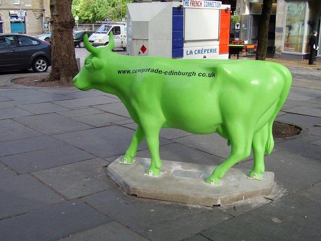 Grassmarket Coo