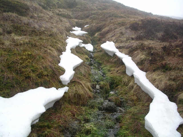 Remnant of a snow drift