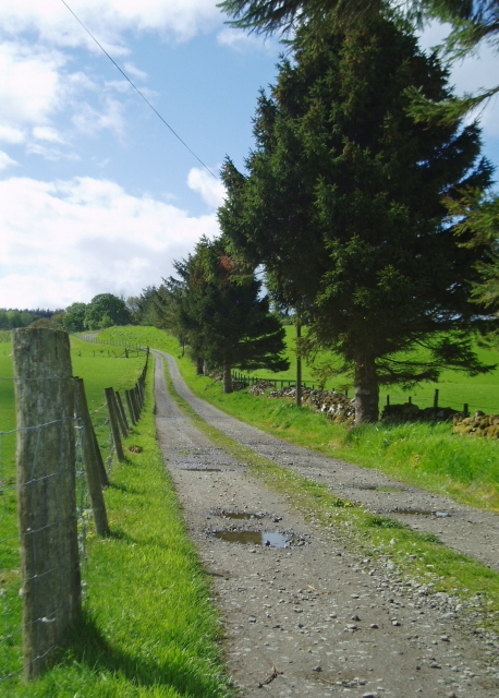 Farm road to West Torrie