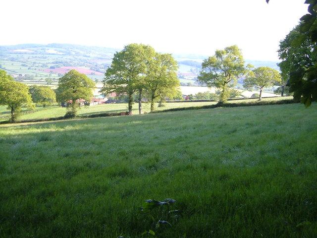 Houstain's Farm from Summer Lane