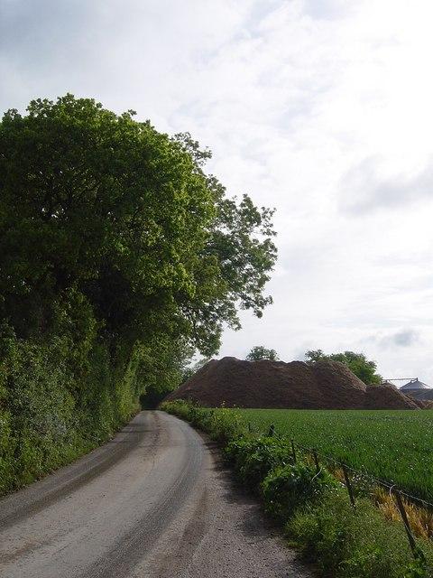 The road towards New Farm, South Warnborough