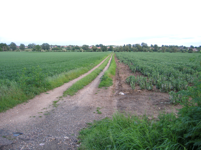 Farm track down to the Ivel Navigation, Stanford, Beds