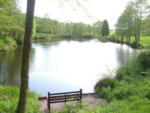 Pond near Harcombe House