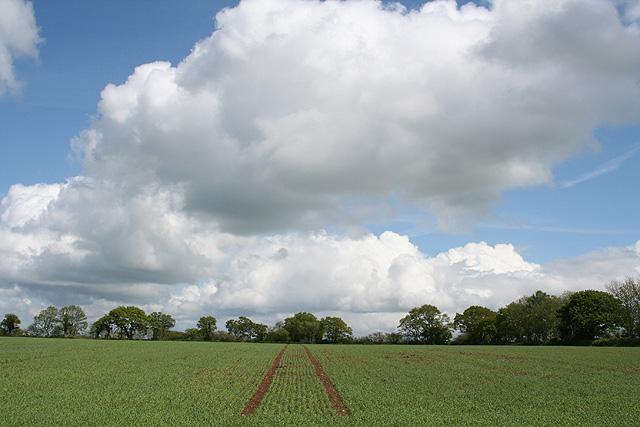 Dunkeswell: near Bowerhayes