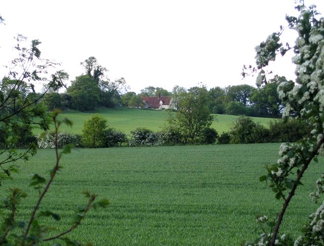 Farmland, Haynes, Beds