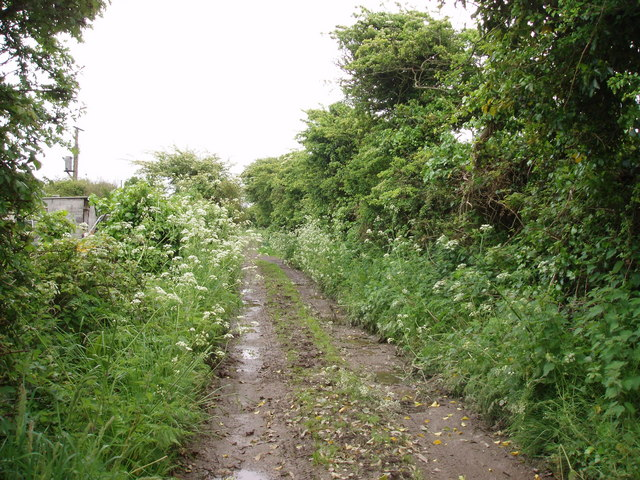 Bridleway to Greenberry Downs