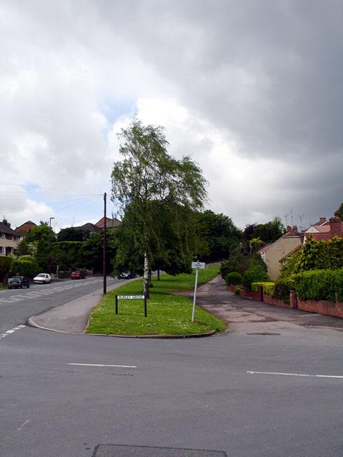 Burley Grove