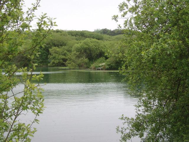 Pool at Tresowes Green