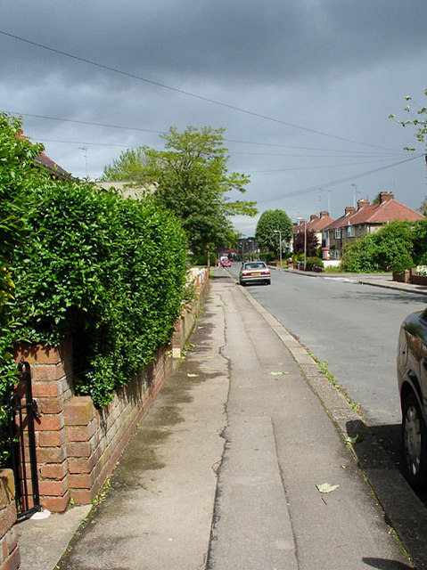 Looking along Burley Grove