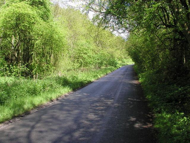 Brantingham Dale