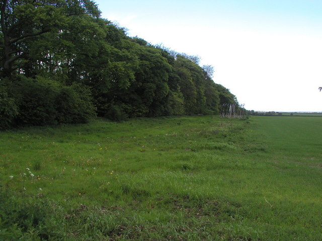 East Plantation