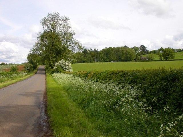 Everdon