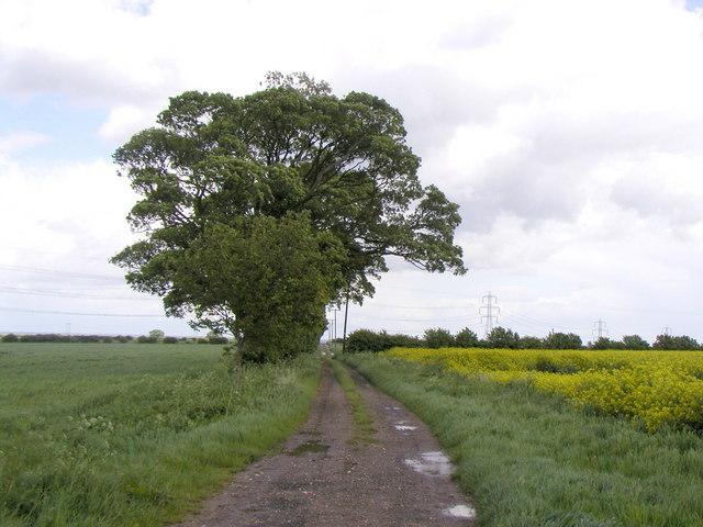 Public Footpath to Bishop Burton