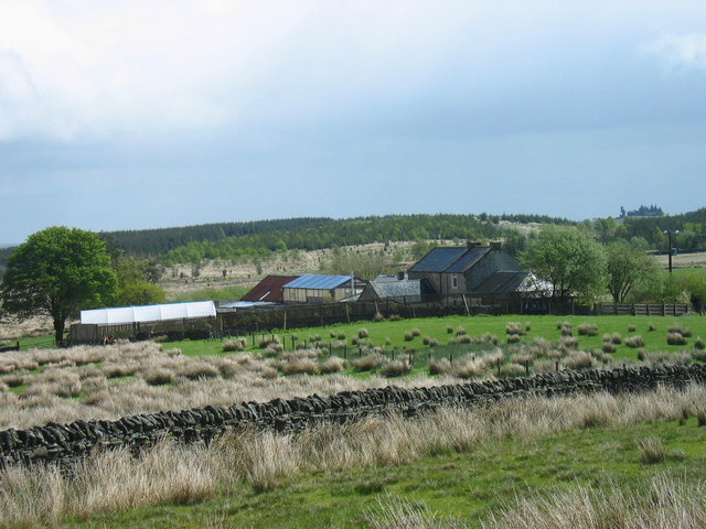 Willowbog Farm