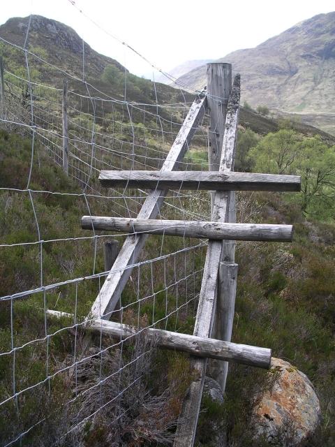 Stile over deer fence, Glen Affric