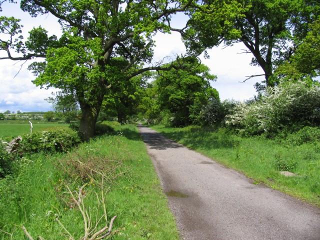 Sutton Lane