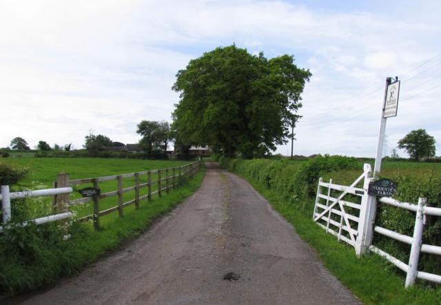 Woodview Farm approach