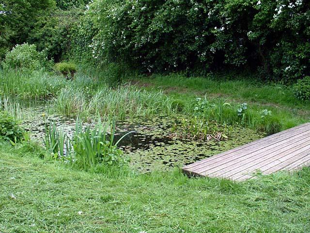 Vinny Green Wildlife Pond