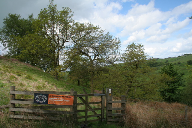 Gate on the Burnley Way, Park Wood